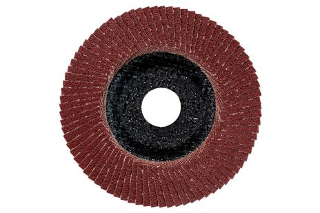 Plateau abrasif à lamelles 125 mm P 60, F-NK (624396000)