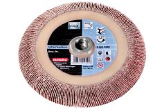 Lamelový brúsny kotúč 125x8xM14 P 40 CER (626470000)