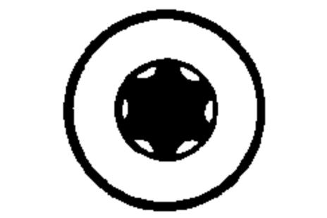 Інструментальна насадка Torsion Torx 10 / 89 мм (624444000)